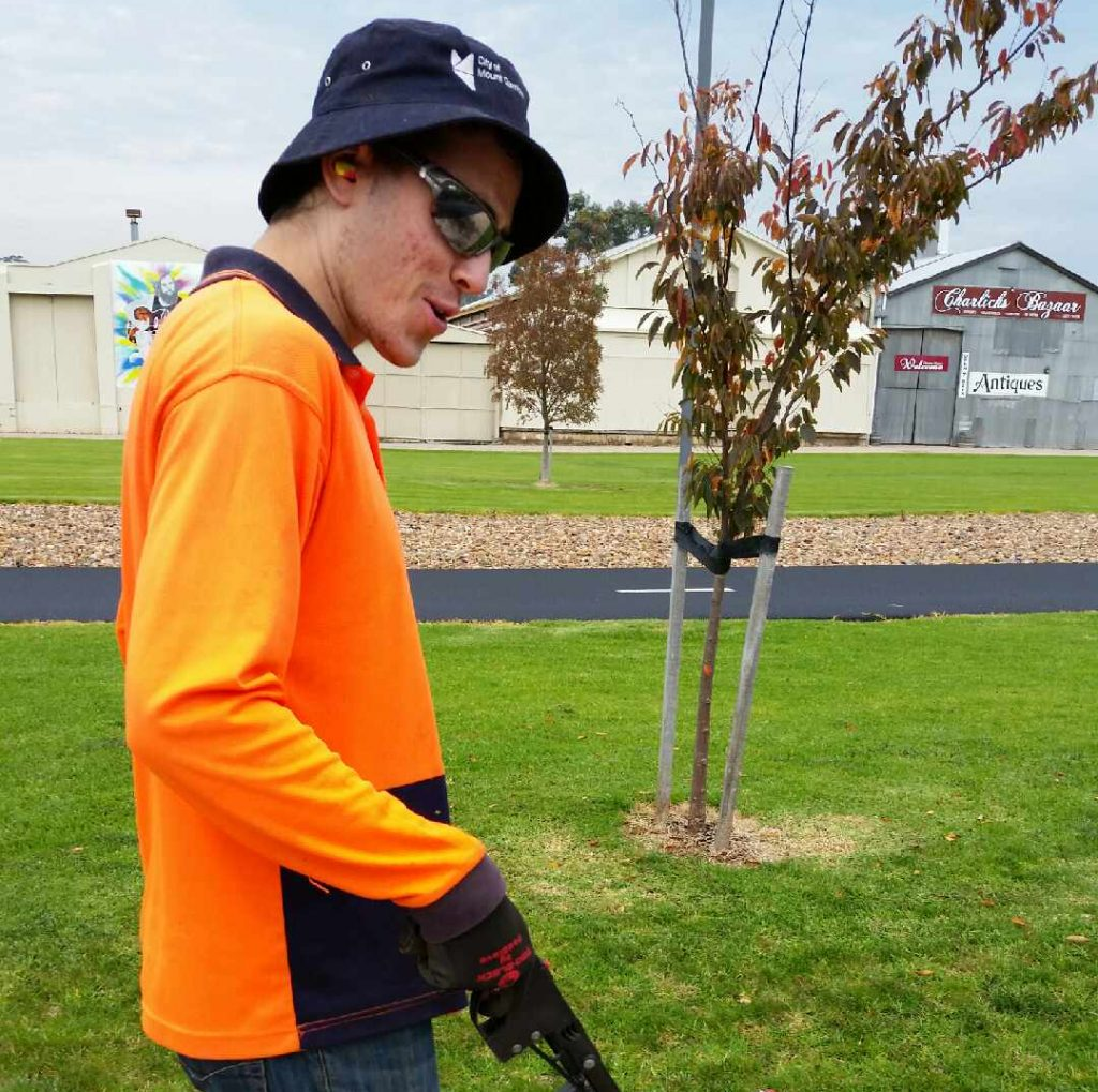 Amechai, who has autism, gives green thumbs up to his new job